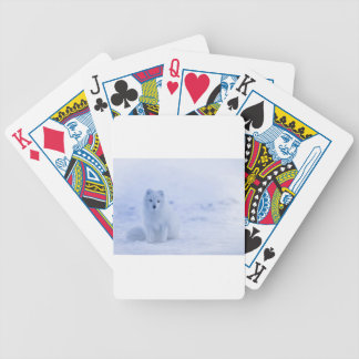 Iceland Arctic Fox Bicycle Playing Cards