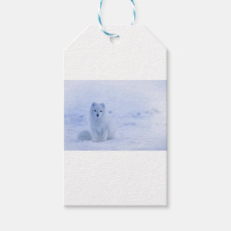 Iceland Arctic Fox Gift Tags