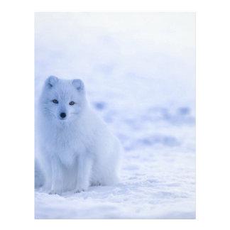 Iceland Arctic Fox Letterhead