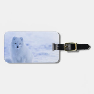Iceland Arctic Fox Luggage Tag