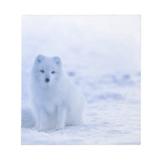 Iceland Arctic Fox Notepad