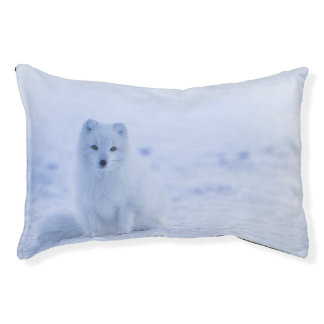 Iceland Arctic Fox Pet Bed