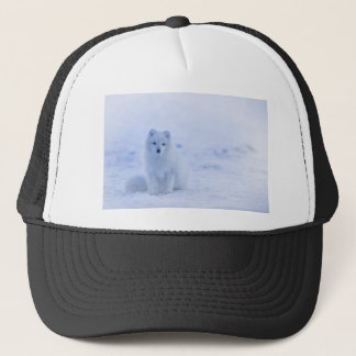 Iceland Arctic Fox Trucker Hat