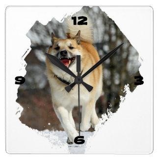 Iceland dog square wall clock