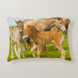 Iceland. Dyrholaey. Icelandic horse foals Decorative Pillow