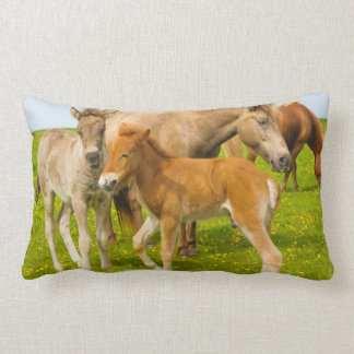 Iceland. Dyrholaey. Icelandic horse foals Lumbar Pillow