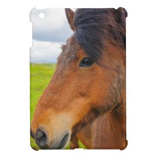 Iceland. Eyrarbakki. Icelandic horse iPad Mini Cases
