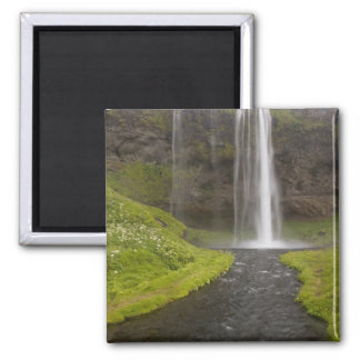 Iceland. People on trail behind Seljalandsfoss Square Magnet
