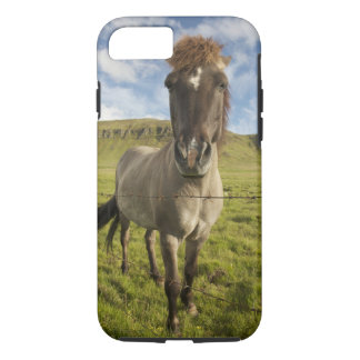 Iceland, Reykjavik. Frontal view of Icelandic iPhone 7 Case