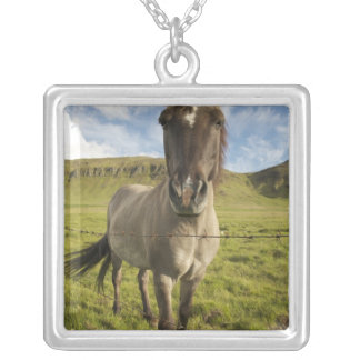 Iceland, Reykjavik. Frontal view of Icelandic Silver Plated Necklace