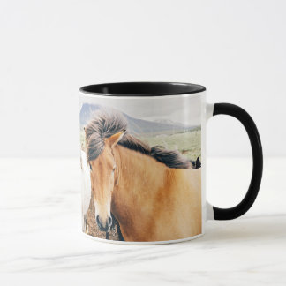 Iceland  three color horses mug