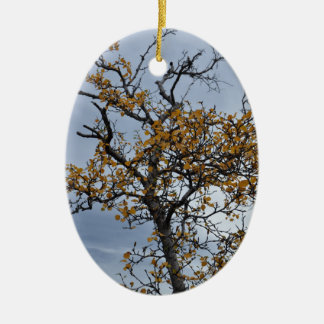 Icelandic Birch Ornament