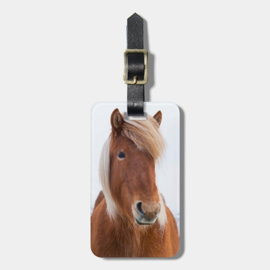 Icelandic Horse during winter  2 Bag Tag