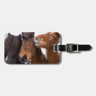 Icelandic Horse friends, Iceland Luggage Tag