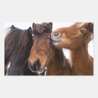 Icelandic Horse friends, Iceland Sticker