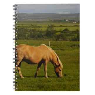 Icelandic Horse Note Book