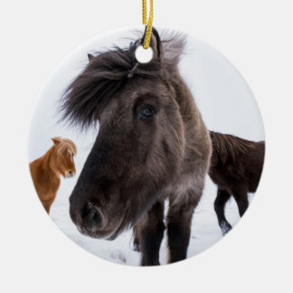 Icelandic Horse portrait, Iceland Round Ceramic Ornament