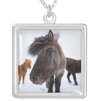Icelandic Horse portrait, Iceland Silver Plated Necklace