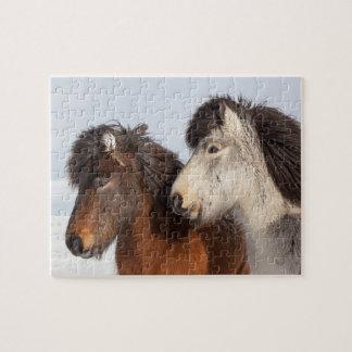 Icelandic Horse profile, Iceland Jigsaw Puzzle