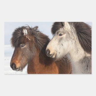 Icelandic Horse profile, Iceland Sticker