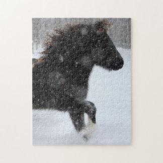 Icelandic horse silhouette puzzle