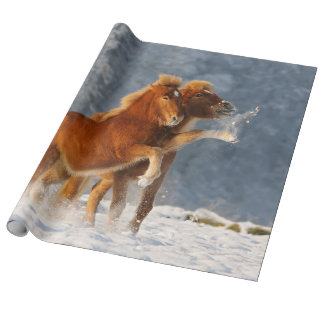 Icelandic Horses Foal Playing in Snow, Roll Wrapping Paper