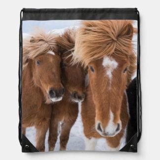 Icelandic Horses nuzzle, Iceland Drawstring Bag