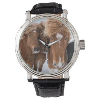 Icelandic Horses nuzzle, Iceland Wristwatch