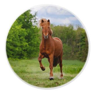 Icelandic Pony at a Tölt Funny Photo Horse Lovers Ceramic Knob