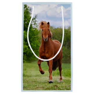 Icelandic Pony at a Tölt Funny Photo Horse Lovers Small Gift Bag