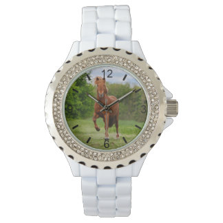 Icelandic Pony Tölt Funny Photo Horse Lovers  dial Watch