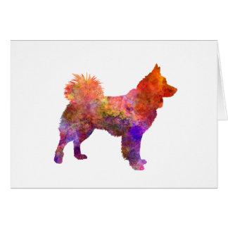 Icelandic Sheepdog in watercolor Card