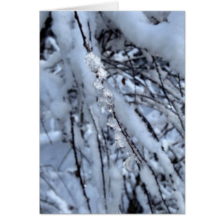 Icicle Holiday Card - Axial Tilt
