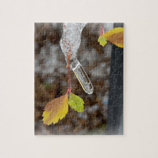 Icicle on leaf jigsaw puzzle