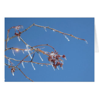 Icicles sparkle in sunlight against the blue sky card