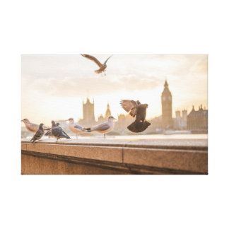 Iconic Big Ben and Westminster with Pigeons Canvas Print