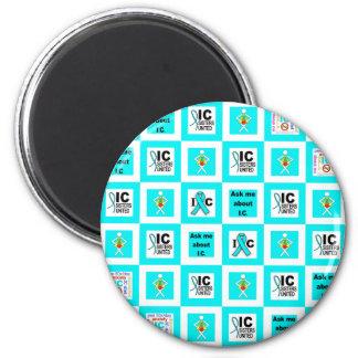 ICSU Tiles Pattern Magnet