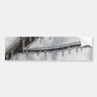 Icy Branch Bumper Sticker