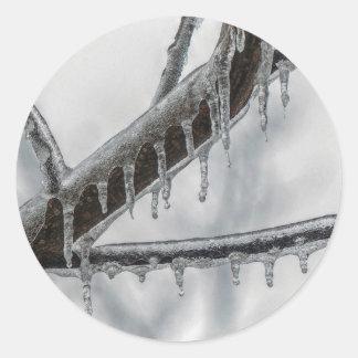Icy Branch Classic Round Sticker