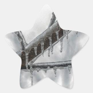 Icy Branch Star Sticker