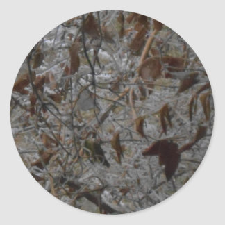 Icy Leaves Round Sticker