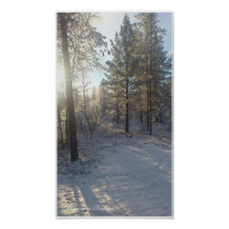 Icy Morning in Finland- Value Poster Paper (Matte)