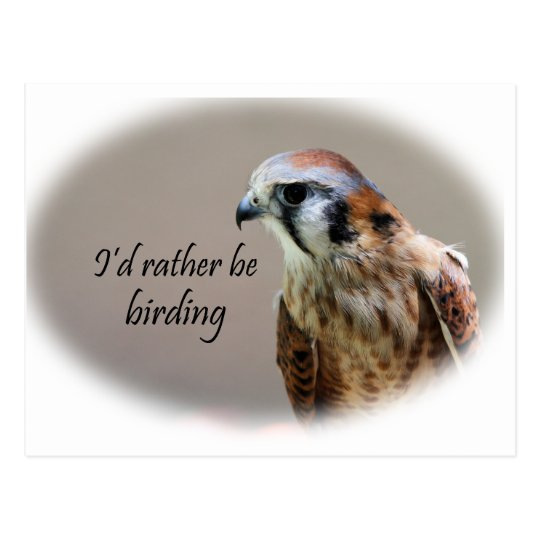 I'd Rather Be Birding Postcard