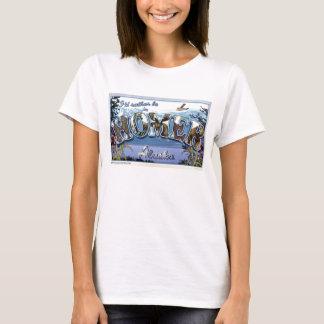 I'd Rather Be in Homer, Alaska T-Shirt