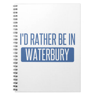 I'd rather be in Waterbury Notebook