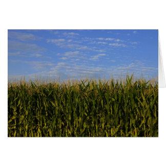 Idaho Corn Field Card
