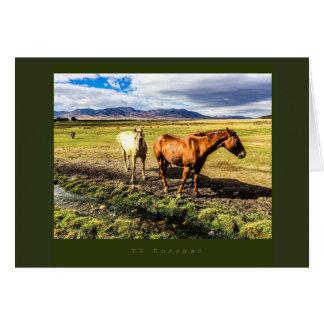Idaho horses photography card