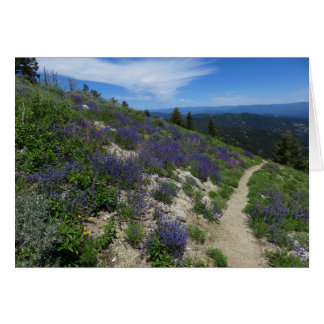 Idaho Mountain Hiking Trail Card