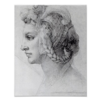 Ideal Head of a Woman, c.1525-28 Poster