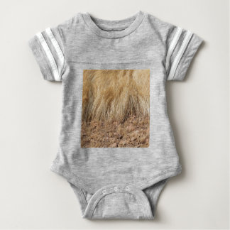 iDetail of a teff field during harvest Baby Bodysuit